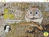 カレンダー2017 森の動物たち