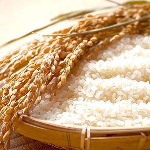 山形県産 ササニシキ 令和元年度産 (玄米 30kg(30kg×1袋), 無洗米に精米後 27kg)