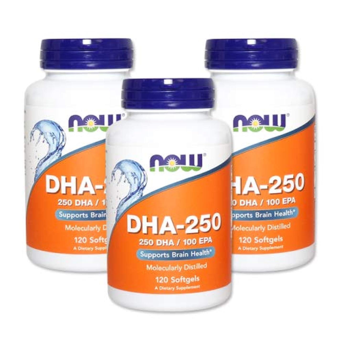 幾何学難民高い3個セット DHA-250 120粒(DHA&EPA配合) [海外直送品]