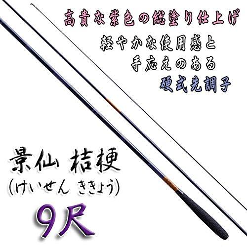 シマノ 景仙 桔梗 9尺