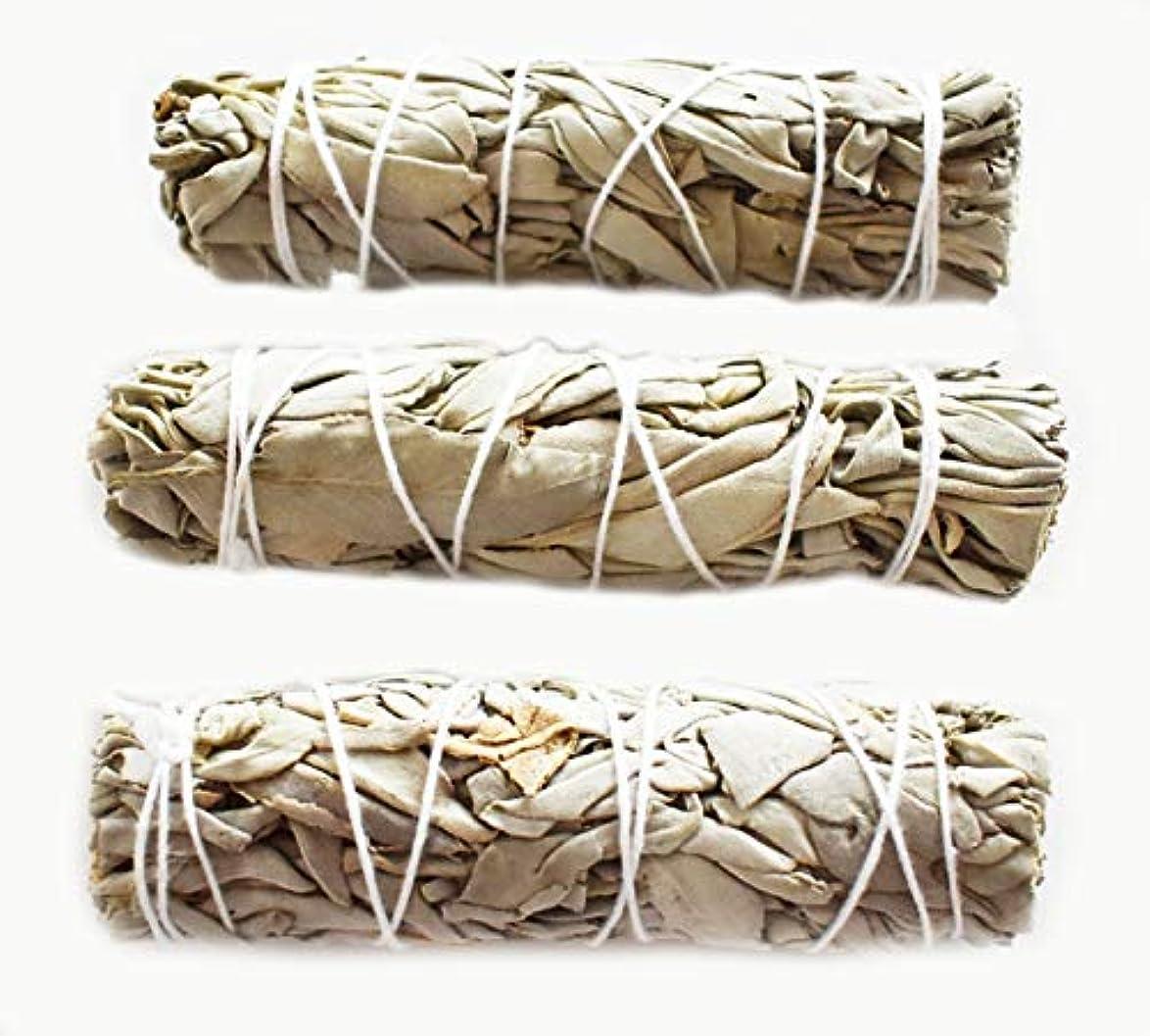 伝統的やさしい重要な3つのセット( 3 )ホワイトセージMini Sticks for Smudging Ceremony正エネルギー& Purification