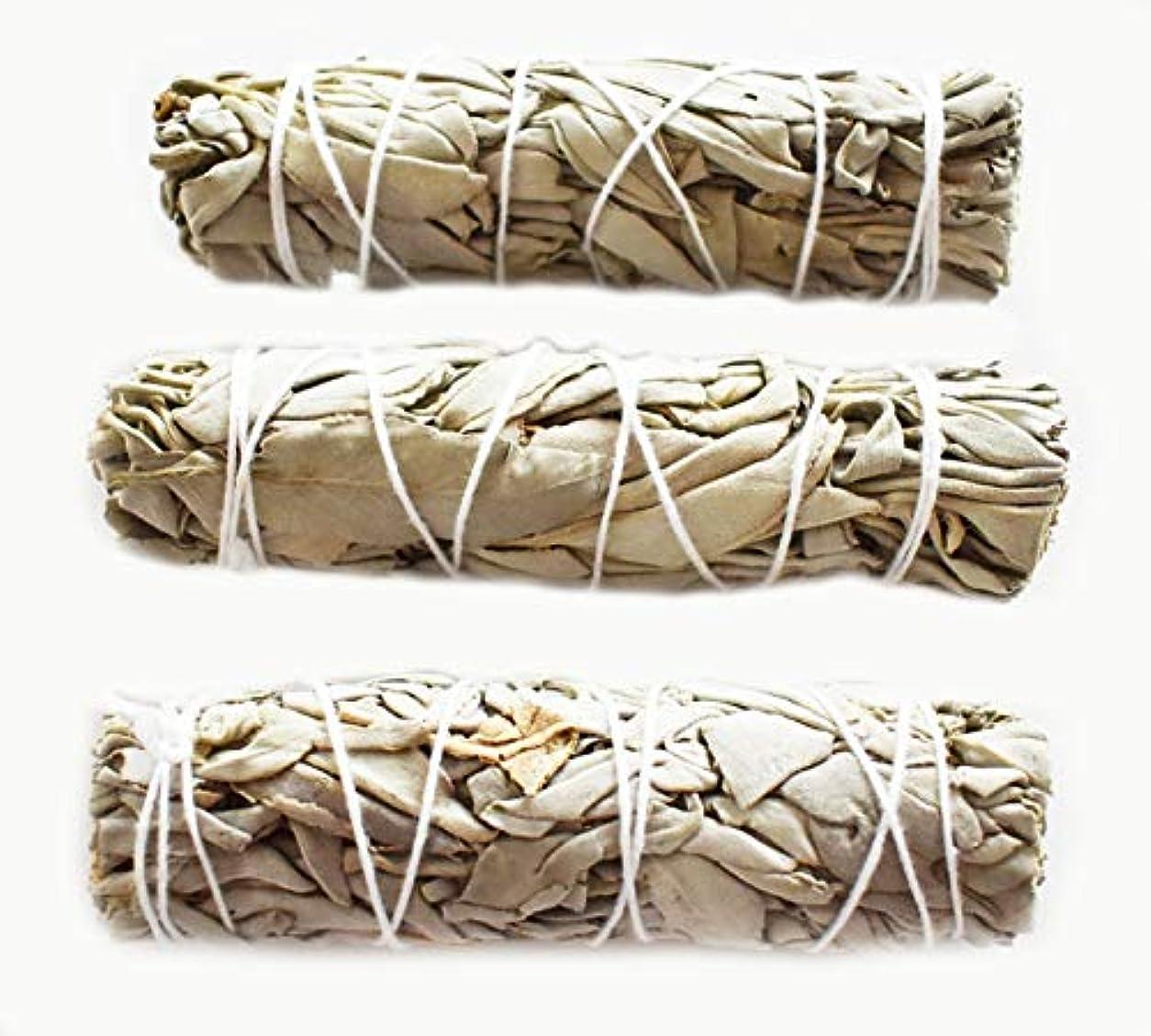 フライカイト口ひげ危険3つのセット( 3 )ホワイトセージMini Sticks for Smudging Ceremony正エネルギー& Purification