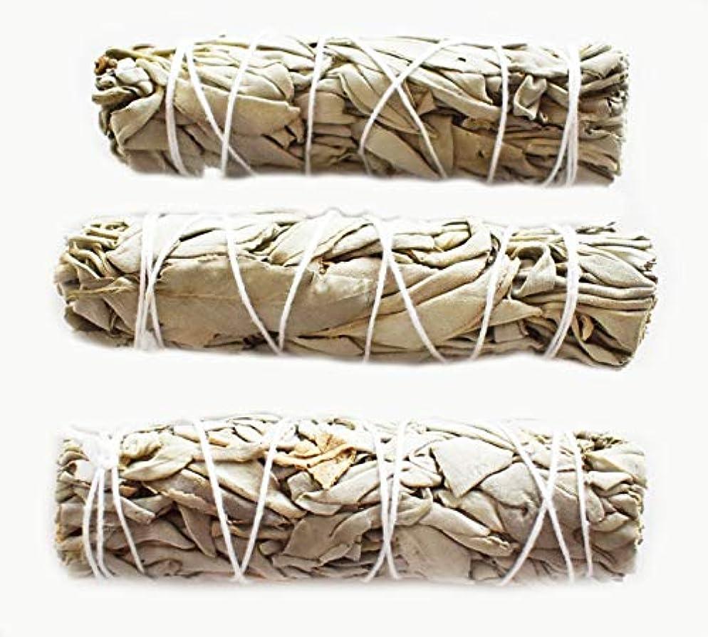 放棄する神の公演3つのセット( 3 )ホワイトセージMini Sticks for Smudging Ceremony正エネルギー& Purification