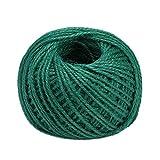 ジュート麻紐 素朴な紐 環境にやさしい天然ジュート 天然 強い 麻 ロープ DIYギフト包装/包装/ガーデニング用 crazystore123 (グリーン)