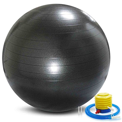 バランスボール メタルブラック 65 / 75cm 破裂防止機能 アンチバースト 機能 フットポンプ 付 エクササイズボール ヨガボール (75)