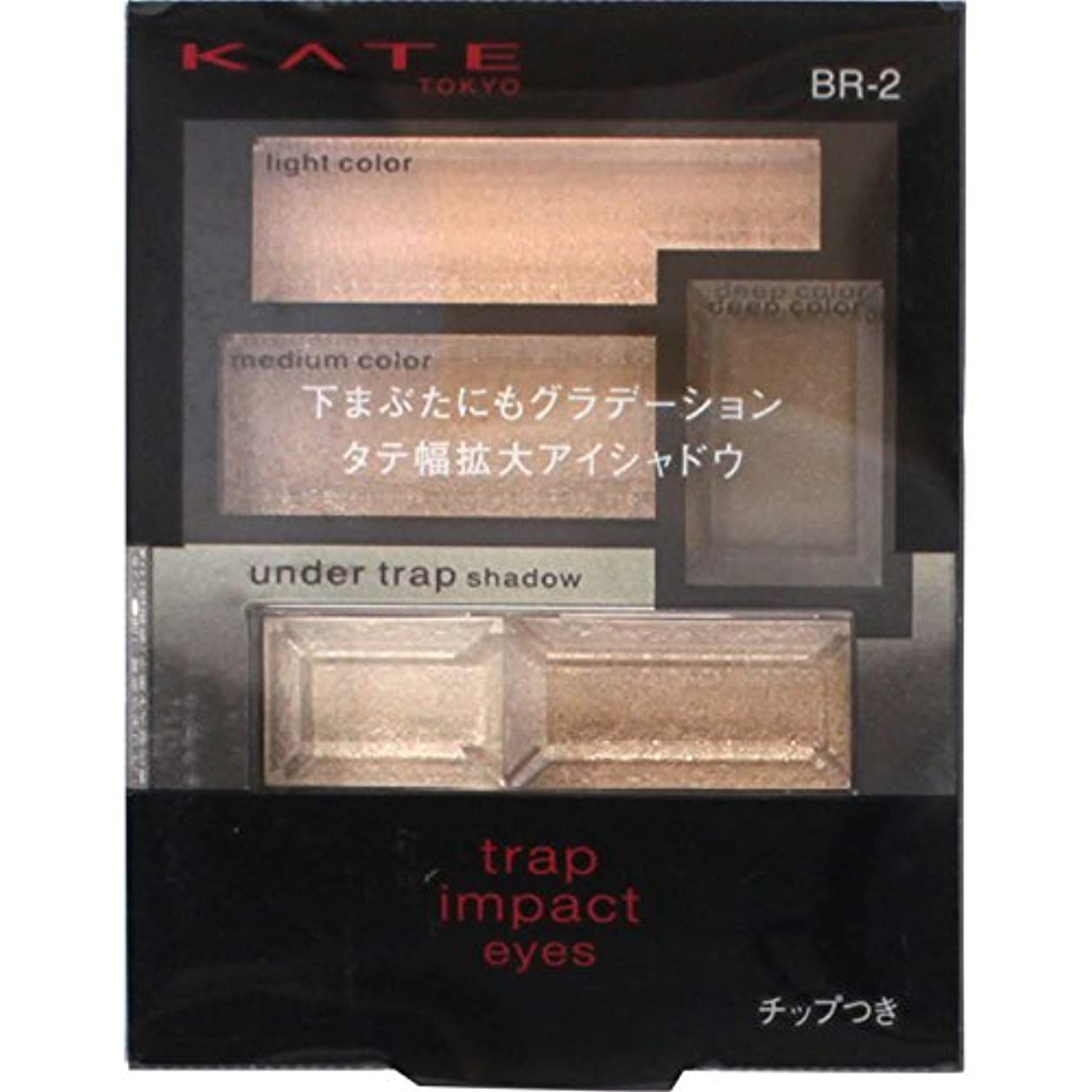 倒錯温室使用法カネボウ ケイト トラップインパクトアイズ BR-2