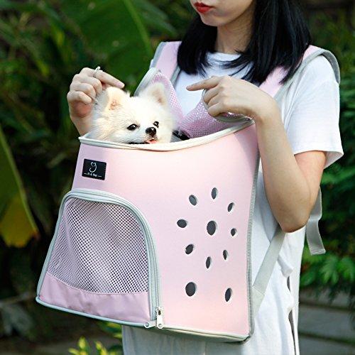 petsfit キャリーバッグ 犬リュック 猫キャリーリュック うさぎ用品お出かけ 散歩用