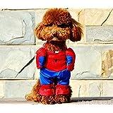 【PETLIFE ペットライフ】小型犬、ネコ用 スーパマン、バッドマン、スパイダーマンス コスチューム 前掛けタイプ ドッグウェア変身服 3サイズ 「901-0042」(スパイダーマン M)