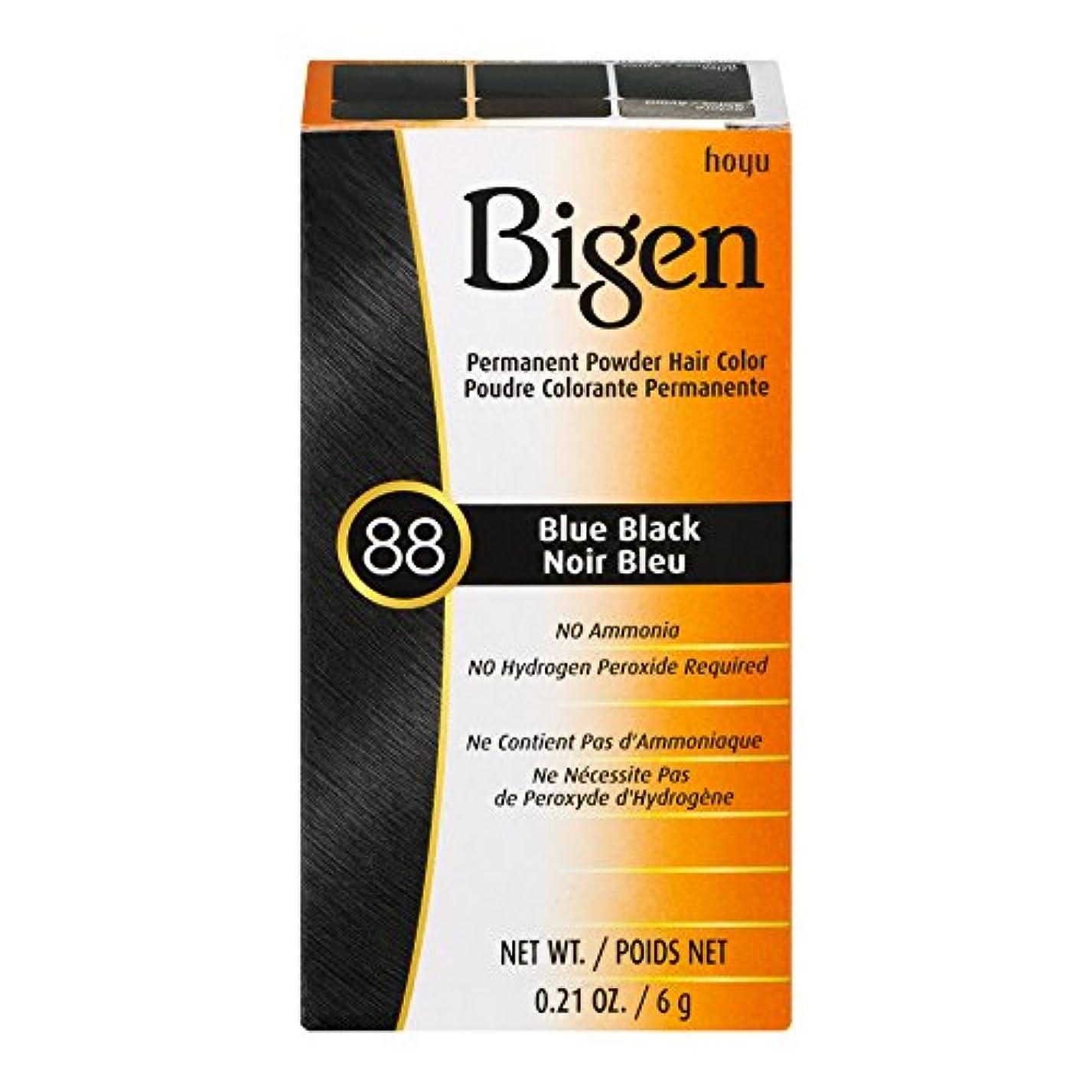 見込みから聞く遊び場Bigen 髪の色 #88ブルーブラック