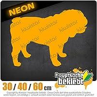 KIWISTAR - English bulldog dog breed 15色 - ネオン+クロム! ステッカービニールオートバイ