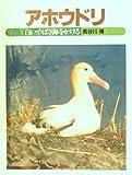 アホウドリ―白いつばさ海をかける (1984年) (ジュニア写真動物記)