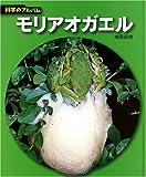 モリアオガエル (科学のアルバム)