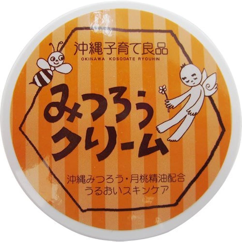 アジア人扱いやすい忌避剤みつろうクリーム 3個セット
