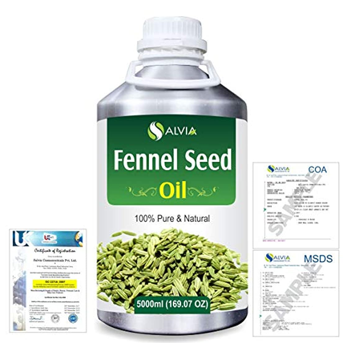 補体縮れた福祉Fennel Seed 100% Natural Pure Essential Oil 5000ml/169fl.oz.