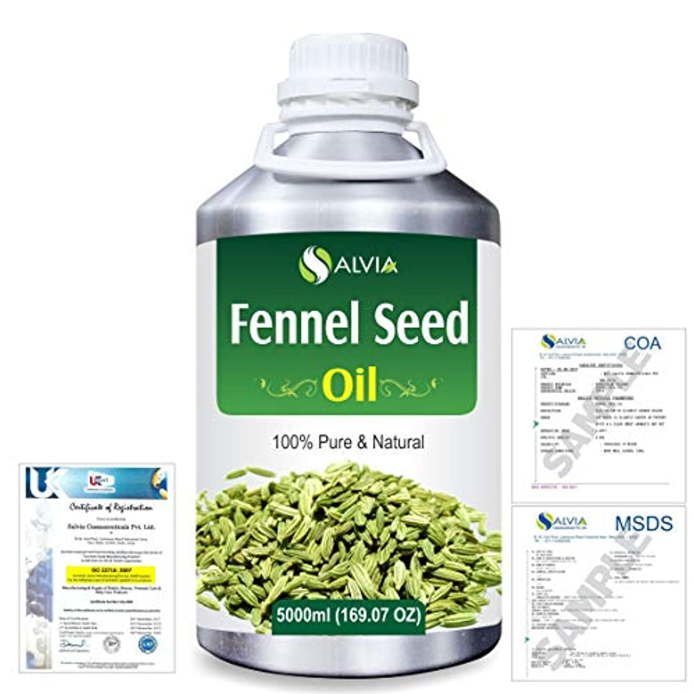 かける直感ピンFennel Seed 100% Natural Pure Essential Oil 5000ml/169fl.oz.