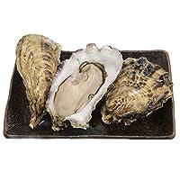 北海道産厚岸産 丸牡蠣 (Mサイズ 30個)