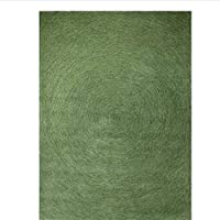 JSY カーペットリビングルームの寝室の床マット入り口ウールグリーンカーペットダークグリーンティーテーブルカーペット春 じゅうたん (Color : D)