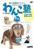 DVD>わんこ塾 1 犬のことを理解しよう! (<DVD>)