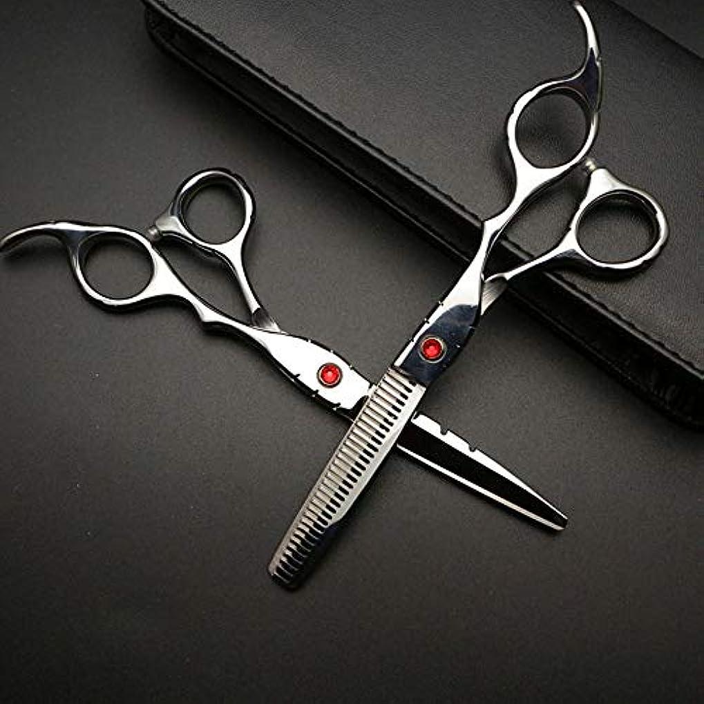 全くがっかりする流星6インチ美容院プロフェッショナル理髪セット、ハイエンド理髪はさみセット ヘアケア (色 : Silver)