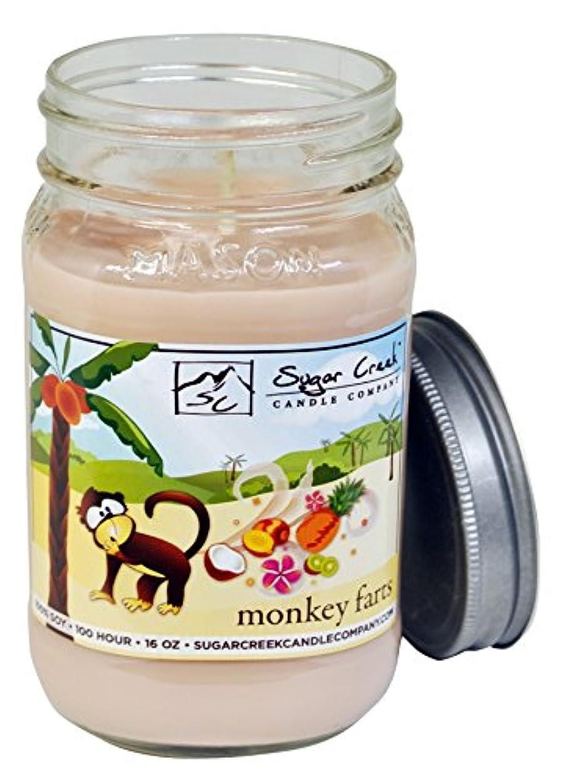 ストリップドアミラーインフルエンザSugar CreekキャンドルMonkey Farts ( Insaneトロピカルフルーツ) 100 % Soy Wax Candle。大豆キャンドルBurn Cleaner ~ Longer ~非毒性~元の100 %...