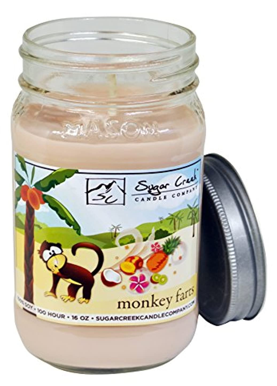 有用宅配便肖像画Sugar CreekキャンドルMonkey Farts ( Insaneトロピカルフルーツ) 100 % Soy Wax Candle。大豆キャンドルBurn Cleaner ~ Longer ~非毒性~元の100 %...