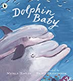 Dolphin Baby (Nature Storybooks)