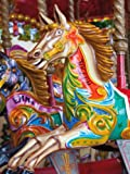 Merry Carousel 500Piece Colorluxeパズル