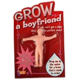 Novelty Grow A Boyfriend Husband Joke Gag Gift [並行輸入品]