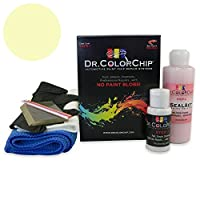 Dr.ColorChip 自動車ペイント Squirt-n-Squeegee Kit イエロー DRCC-813-7608-0001-SNS