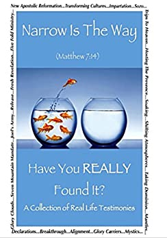 Narrow Is The Way - Have You Really Found It?: A collection of real life testimonies. by [Hansell, M. Barbara, Choiniere, David, Deets, Angie, Keenan, J.F., Chadim-Kirkpatrick, Maria, McCloud, Joy, Pell, Tricia, Snider, Jason, Whatmore, Oscar J.]