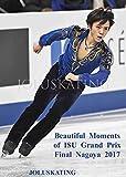 美しき瞬間 フィギュアスケート ISUグランプリファイナル2017 名古屋 Beautiful Moments of ISU Grand Prix Final Nagoya 2017