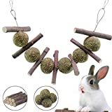 Bunny Chew Toys for Teeth, Natural Organic Apple Chewing Sticks with Grass Balls for Rabbits, Chinchillas, Guinea Pigs, Hamsters, Parrots Improve Dental Health, Double Head Suspension