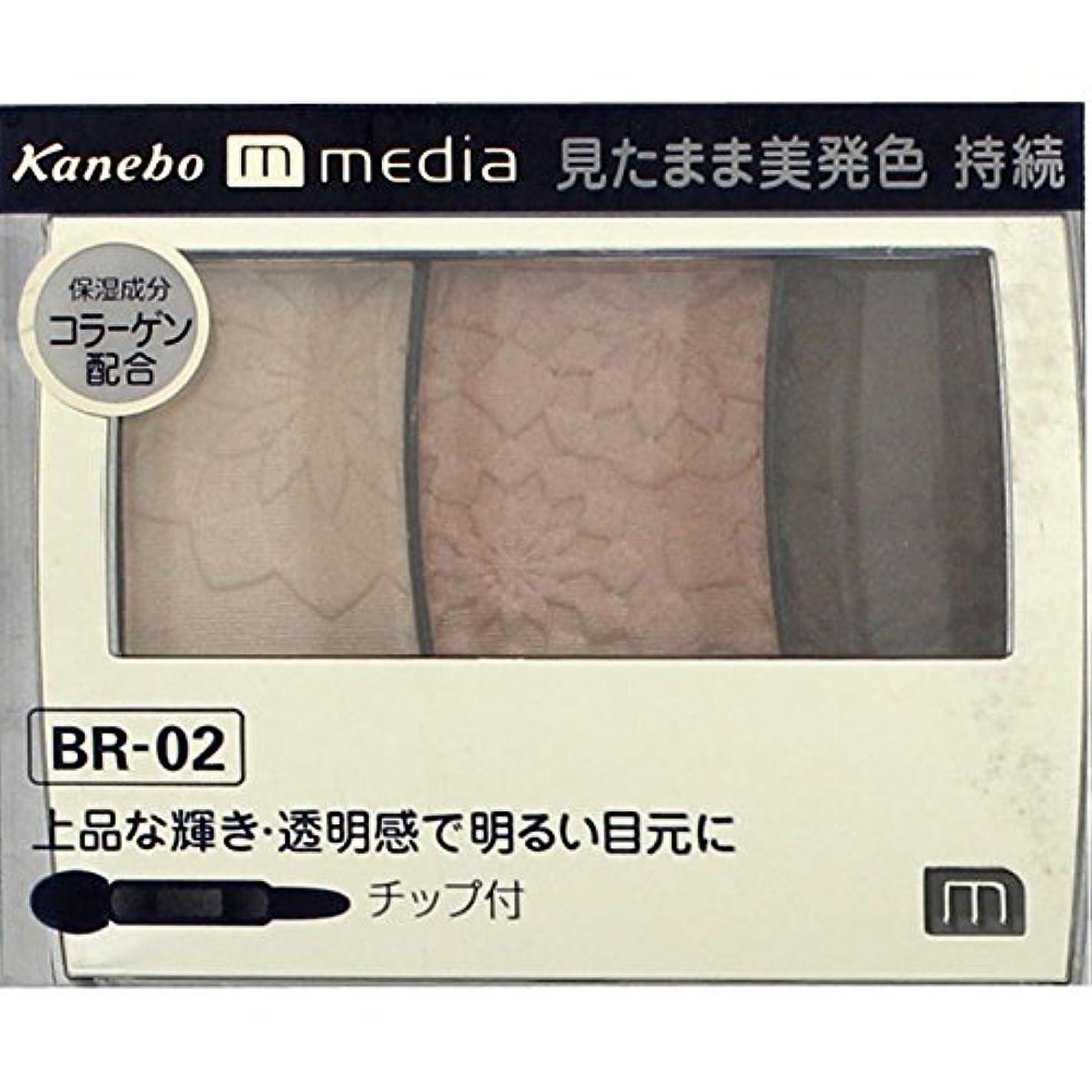 準備した農村バックアップ【カネボウ】 メディア グラデカラーアイシャドウ BR-02