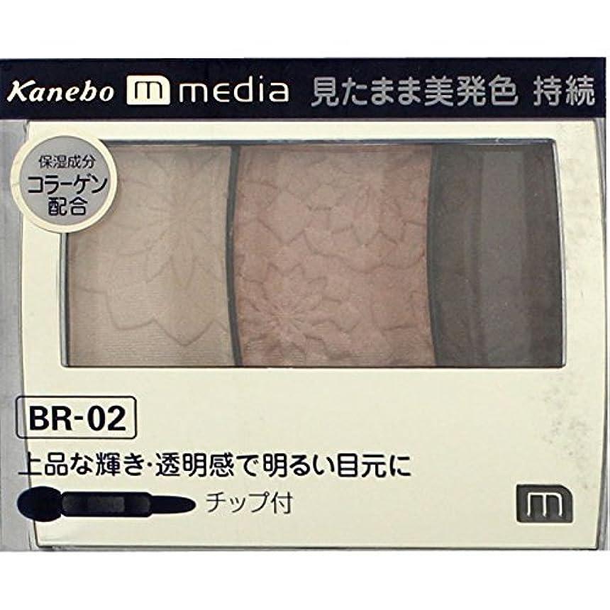 聡明パーフェルビッドファイバ【カネボウ】 メディア グラデカラーアイシャドウ BR-02