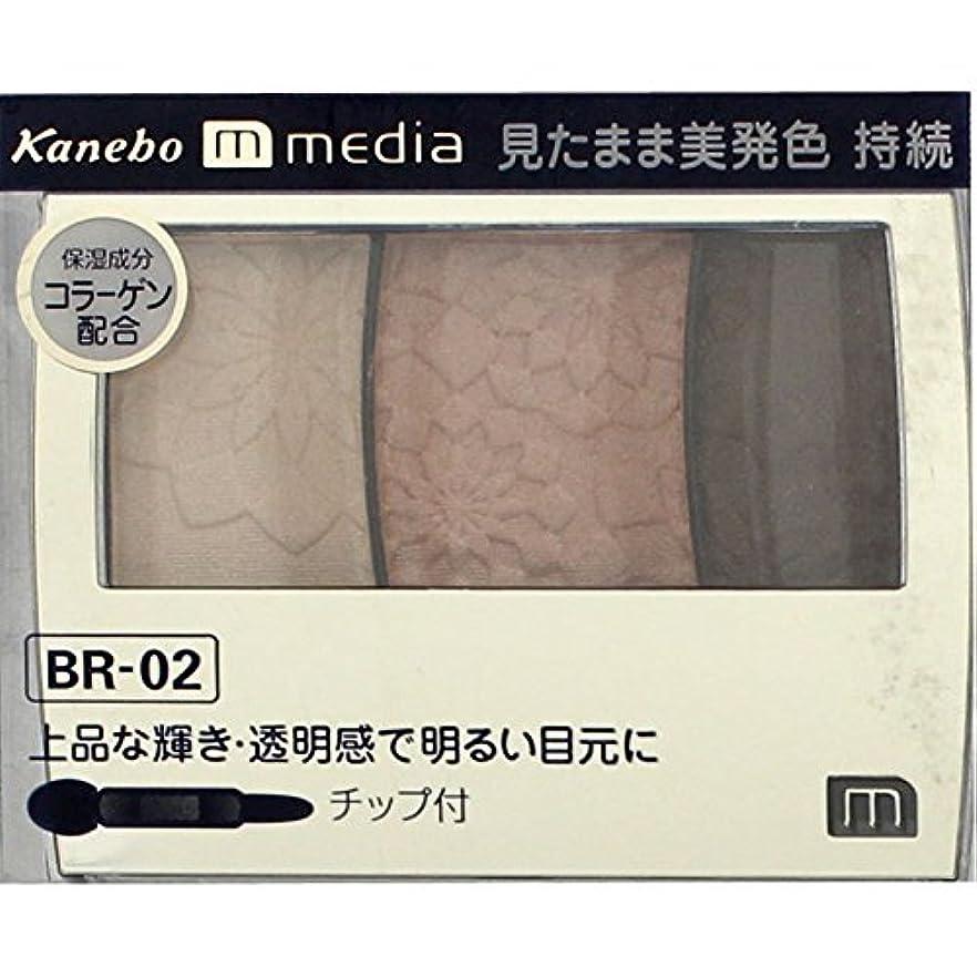 ダンプ火山良心的【カネボウ】 メディア グラデカラーアイシャドウ BR-02