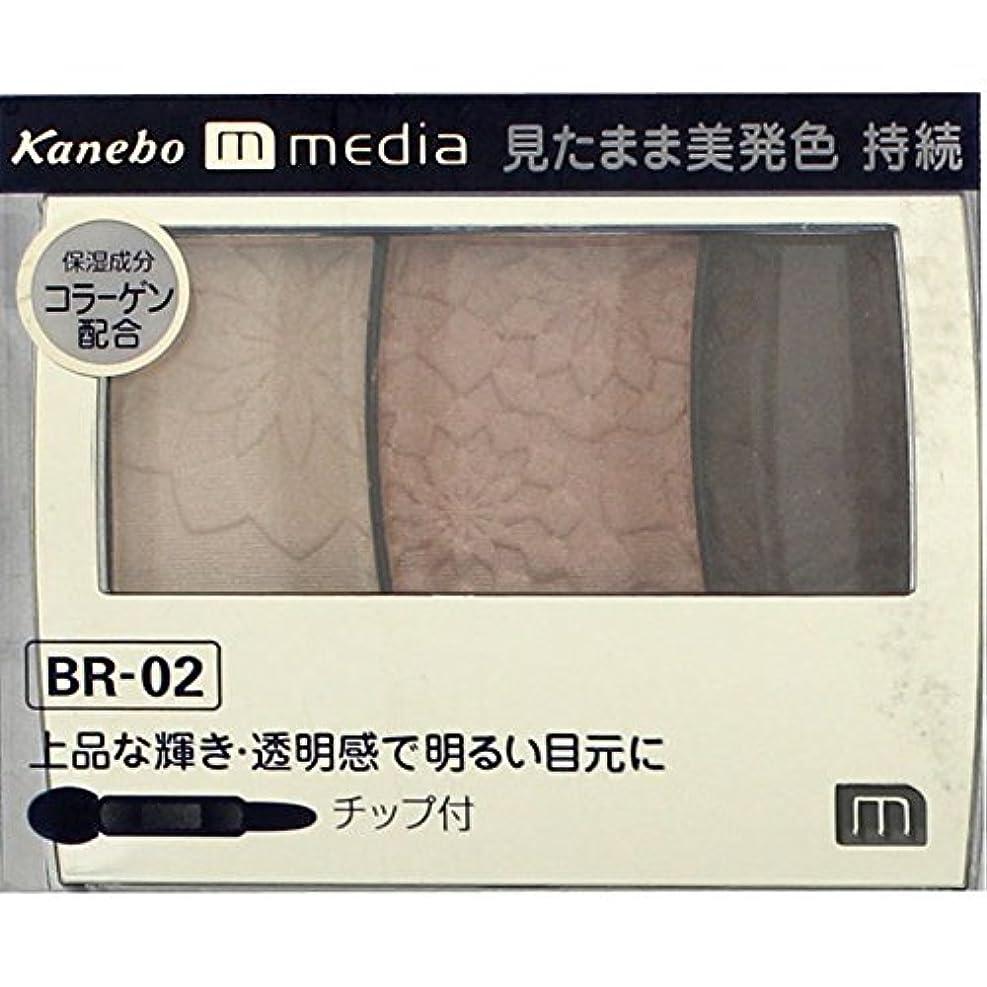 音声学控えめなスパイ【カネボウ】 メディア グラデカラーアイシャドウ BR-02