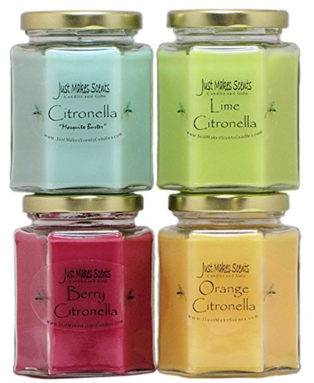 オーバーラン太字ジョージバーナードインドアCitronella Candle Variety Pack | Flying反発昆虫内側|手Poured in the USA by Just Makes Scents