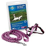 PetSafe Come with Me Kitty Harness and Bungee Leash, Harness for Cats, Small, Dusty Rose/Burgundy