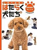 しらべよう!はたらく犬たち 4 訪問活動犬・タレント犬