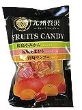冨士屋製菓 九州贅沢フルーツキャンディ 100g×10袋