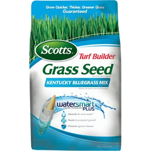Turf Builder Kentucky Bluegrass Mix Grass Seed-3LB TB KENTUCKY BLUEGRSS (並行輸入品)