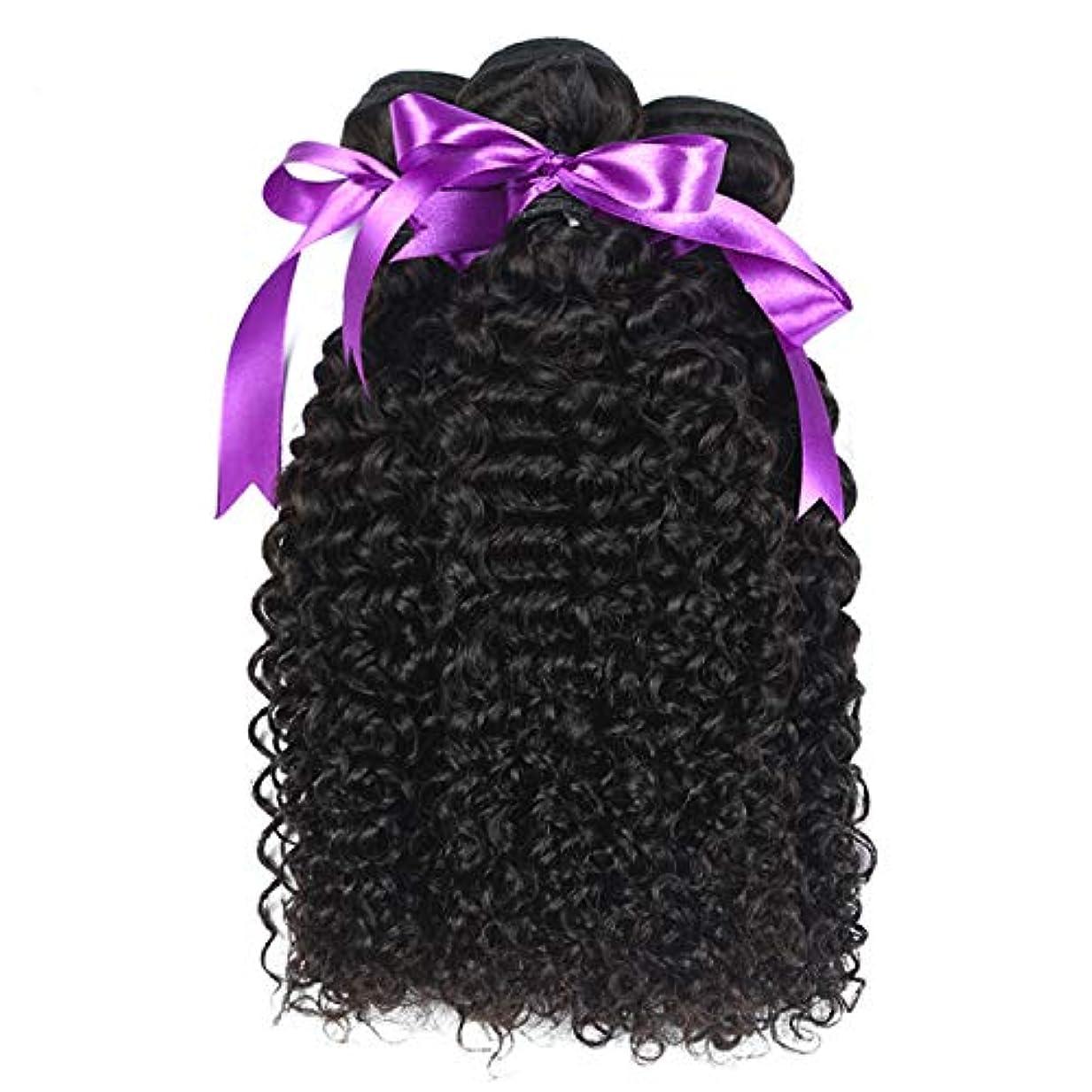 リード保有者自分のためにマレーシアの巻き毛の束8-28インチ100%の人間の毛髪は、Remyの毛のナチュラルカラー3個の巻き毛の束を織ります かつら (Stretched Length : 14 16 18)
