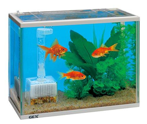ジェックス 金魚元気 水きれいセットS