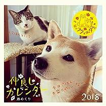 2018年卓上リングカレンダー 柴犬フクと猫のタラ。仲良しカレンダー ([カレンダー])