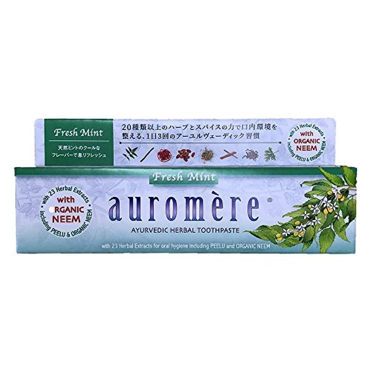 特に捨てる耐えられるオーロメア 歯磨き粉 フレッシュミント (100g)