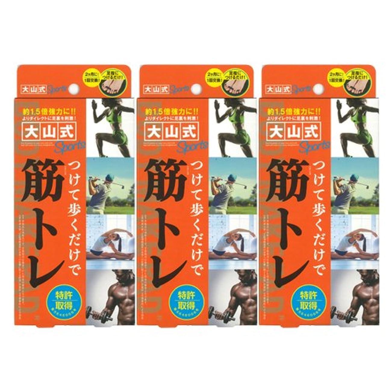 ホイスト野心的犬大山式ボディメイクパッド スポーツ ×3箱セット