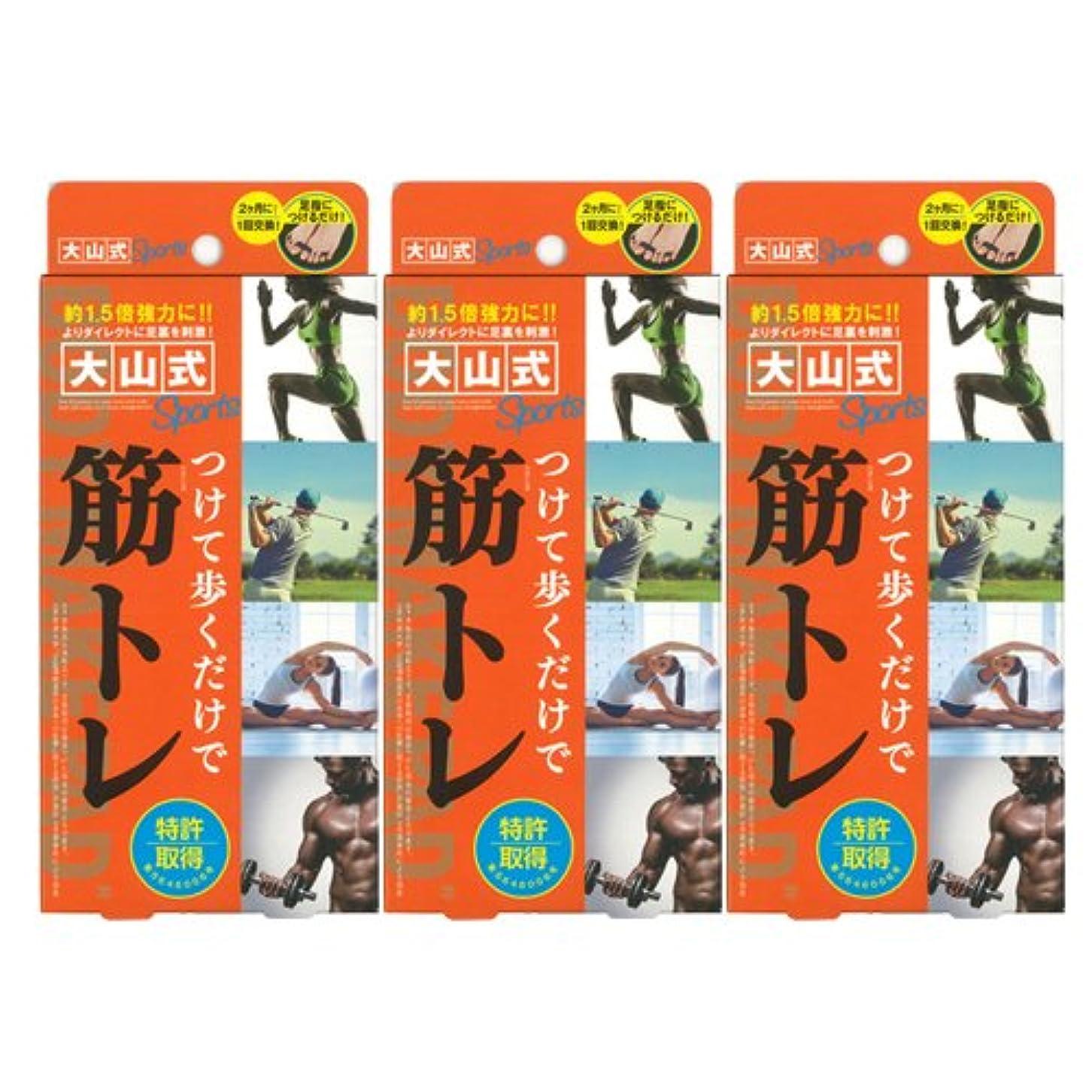 聖歌カイウス人間大山式ボディメイクパッド スポーツ ×3箱セット