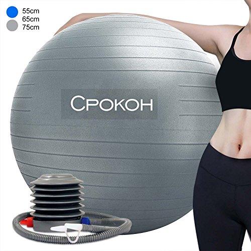 CPOKOH バランスボール (シルバー, 65cm)フィットネスボール、 ヨガボール 、 ジム ボ ール 、ダイエットボール エクササイズ用 ポンプ付き アンチバースト仕様 ジム/家/オフィスなどに適用