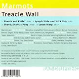Marmot Treacle Wall