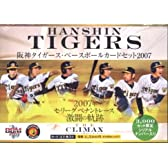 阪神タイガース 2007年ペナントレース激闘の記録~THE CLIMAX~